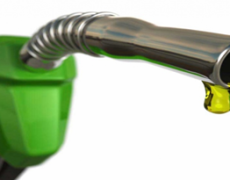 В этом году бензин дорожать больше не будет